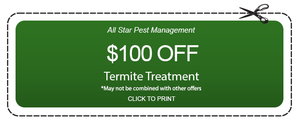 Coupon for Termite treatment